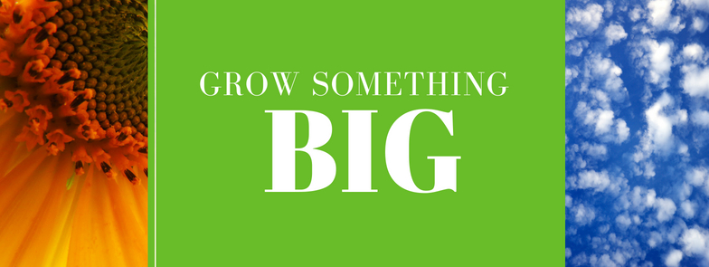 GrowSomethingBIG banner